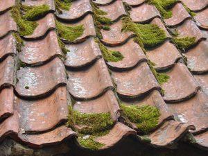 Comment procéder au nettoyage et au démoussage du toit ?